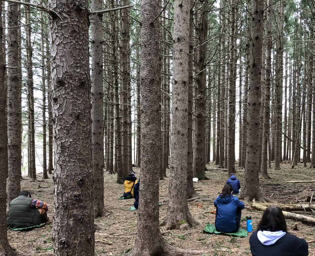 Students sitting in the forest